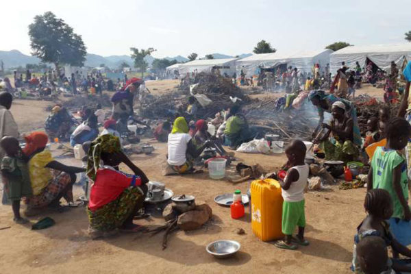 UNHCR alarmed by forceful return of Nigerian refugees from Cameroon