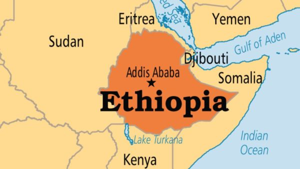 Ethiopia can hold elections with necessary precaution against COVID-19-Official