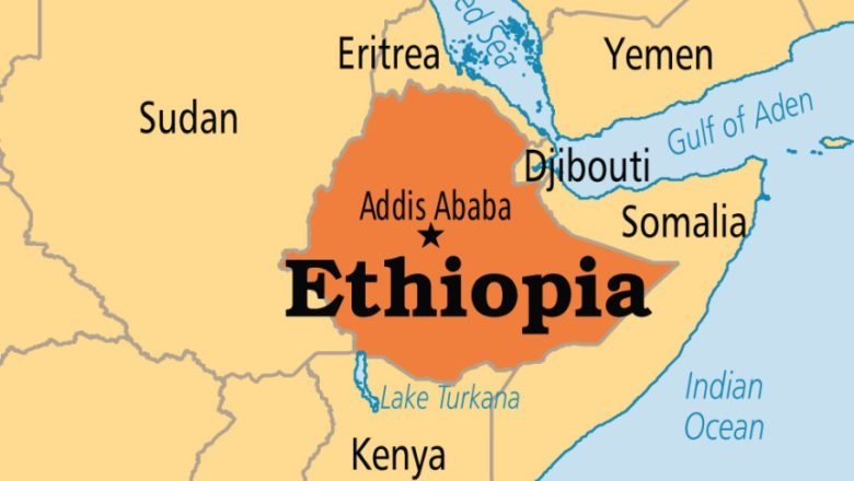 African bloc wants ceasefire as Ethiopia's Tigray alleges Eritrean incursion